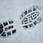 Winterwandeling 20 november
