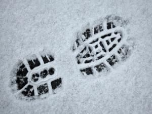 winterwandeling-950x712